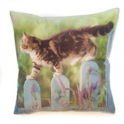 Povlak na polštář foto 40 x 40 cm Kočka na plotě