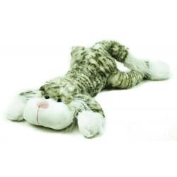 Kočka ležící mourovatá